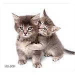 Allsop Kittens Mouse Pad
