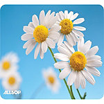 Allsop Daisies Mouse Pad