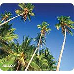 Allsop Palm Trees Mouse Pad