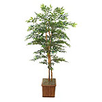 Foster's Point 7' Green Smilax Tree 249.00