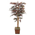 Foster's Point 7' Red Smilax Tree 249.00
