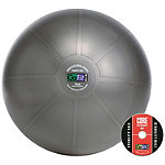 GoFit Professional Stability Ball
