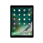 Apple12.9' iPad Pro with Wi-Fi 32GB Space Gray