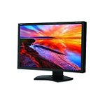 NEC 24.1' Monitor 1079.00