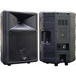Pyle Pro 500-Watt 2-Way Molded Speaker Cabinet