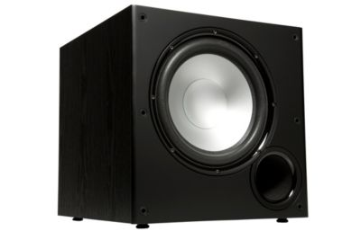 Polk Audio 100-Watt 10